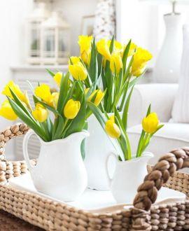 Свежа Пролет
