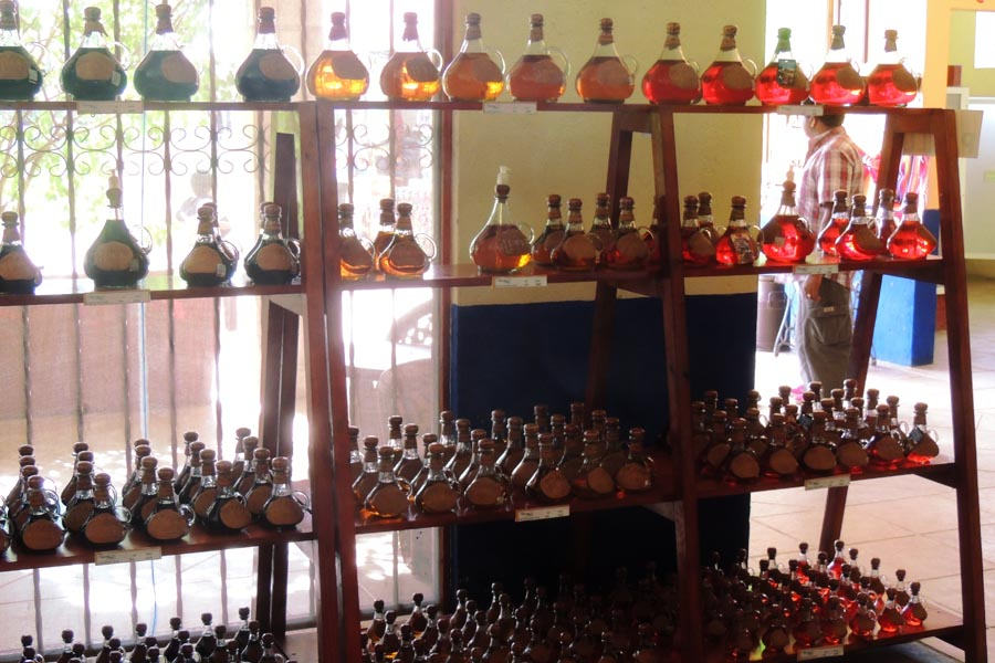 Try the Real Mexican Tequila Cozumel Tequila Factory