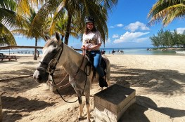 Horseback Riding in Roatan, Honduras
