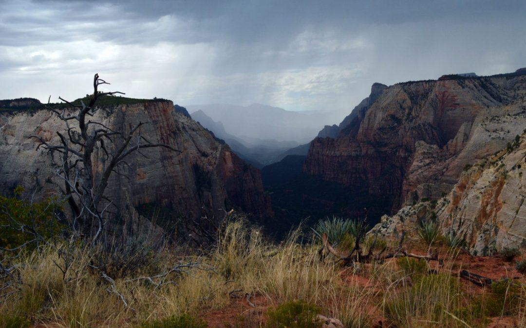 4 hikes you have to do in Zion National Park