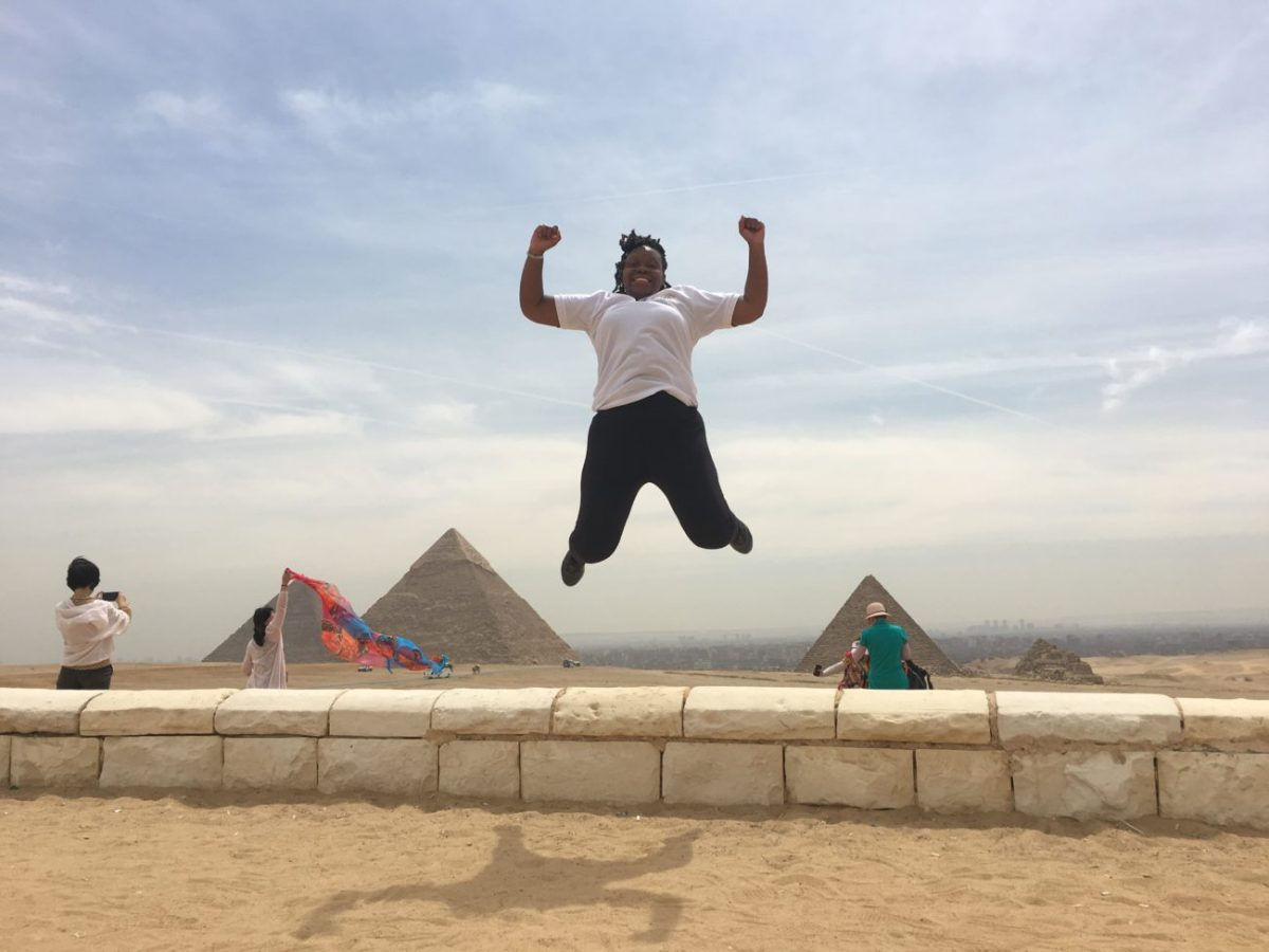 CAIRO STOPOVER TOUR TO GIZA PYRAMIDS EGYPTIAN MUSEUM CITADELand BAZAAR