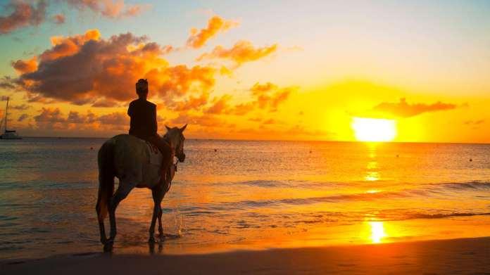 person on horseback on beach
