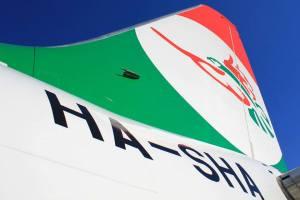 A HA-SHA lajstromú Boeing 737-500 pár órát töltött a levegőben a Sólyom színeiben. (Fotó: Rimóczi Roland / Traveler Circle)