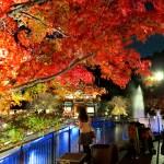 箕面での滝デートがおすすめ!ライトアップした紅葉もご紹介。