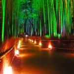 京都で和のクリスマスデートを送ろう!オススメスポット4選。