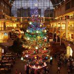 札幌のクリスマスデートはロマンチック♡オススメスポット4選をご紹介。