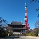 夜にオススメ☆東京にある初詣スポットをご紹介!