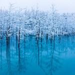 冬の旅行は北海道!観光オススメスポットをご紹介!