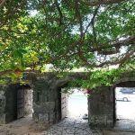 旧崇元寺はパワースポット~石門の前で歴史を感じよう!がじゅまるも気になる!?