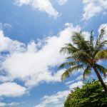 沖縄のノロとユタの違いとは?