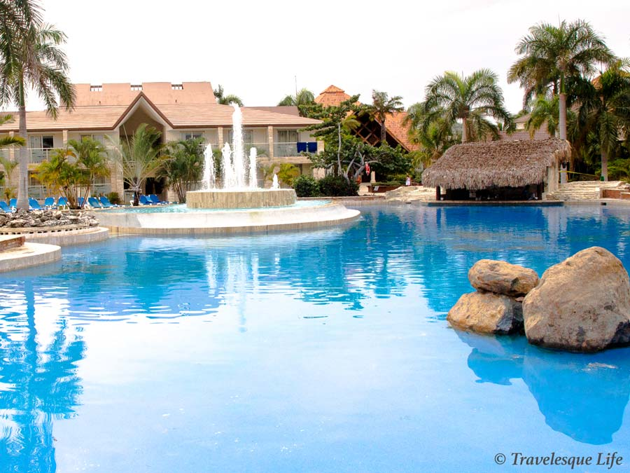 IFA bavarois busy pool