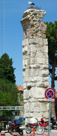 Efez - bocian