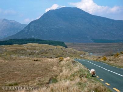 Ireland: Galway & Mayo