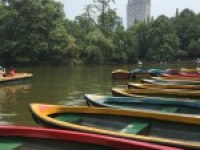 Boats on People's Park in Chengdu, China