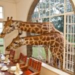 Giraffe Manor, Kenya, Africa