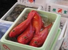 Tsukiji market 042