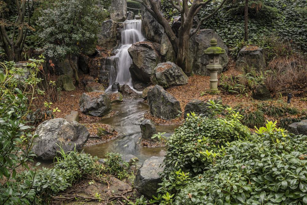 Water flowing through the Japanese Friendship Garden