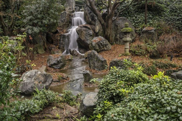 Water flowing through the Japanese Friendship Garden