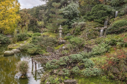 View of the Japanese Friendship Garden