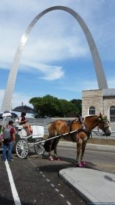 Gateway Arch St. Louis Missouri USA