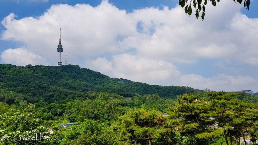 View of N Seoul Tower from Namsan Park in Seoul