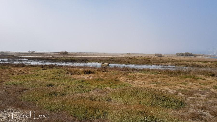 Boat - Nature Reserve