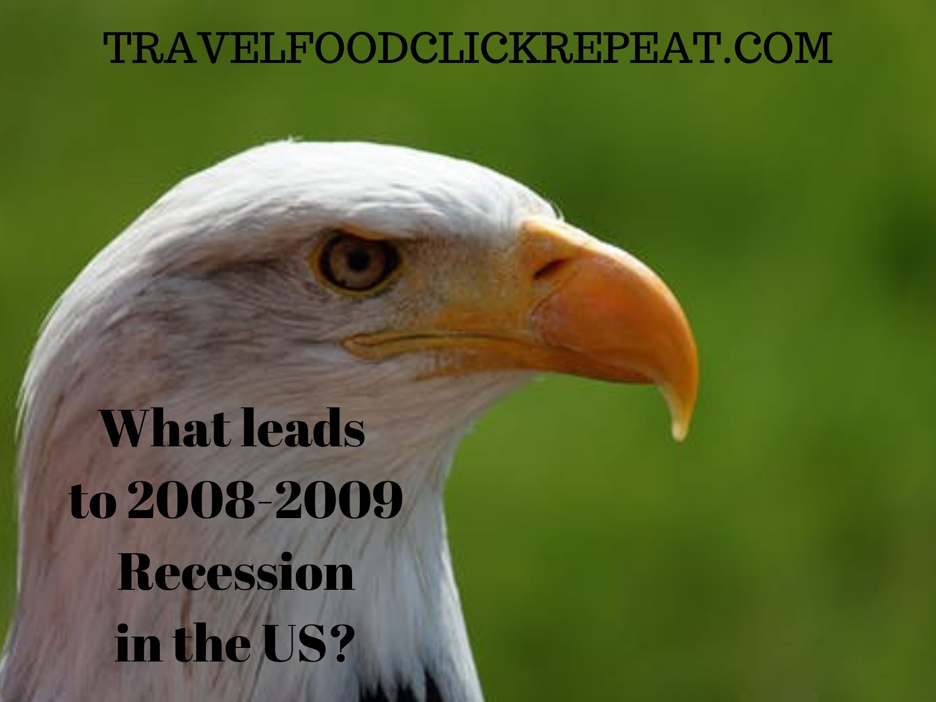 What leads to 2008-2009 Recession in the US?