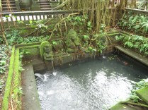Pool in Temple
