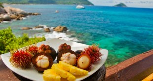 Plateful of exotic foods to try in hawaii with views to the sea