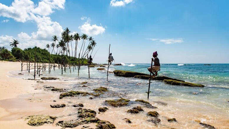 sri lanka things to do and see