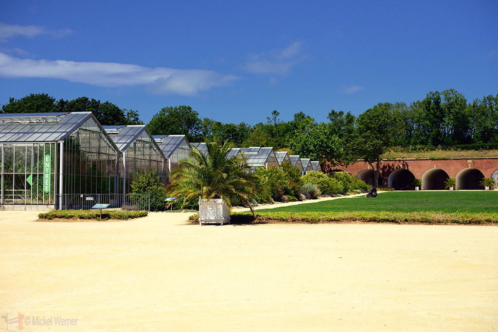 One side of the greenhouses of the Jardin Suspendu of Le Havre