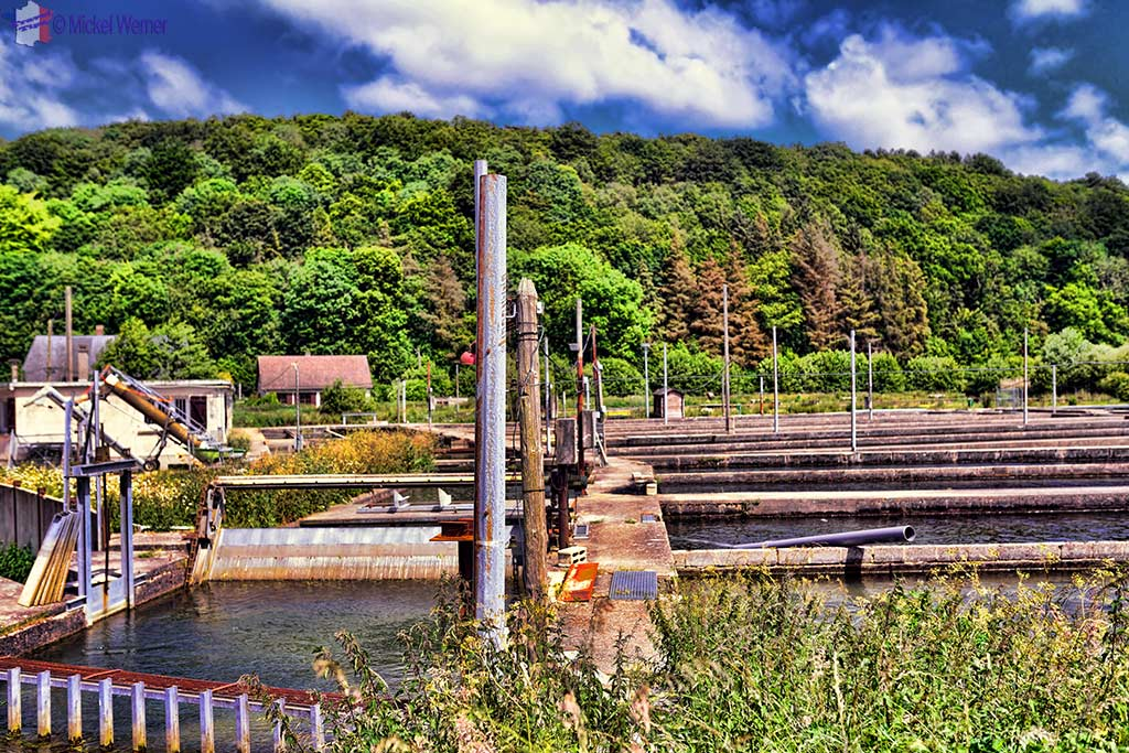 Fishfarm in the Durdent river in Normandy