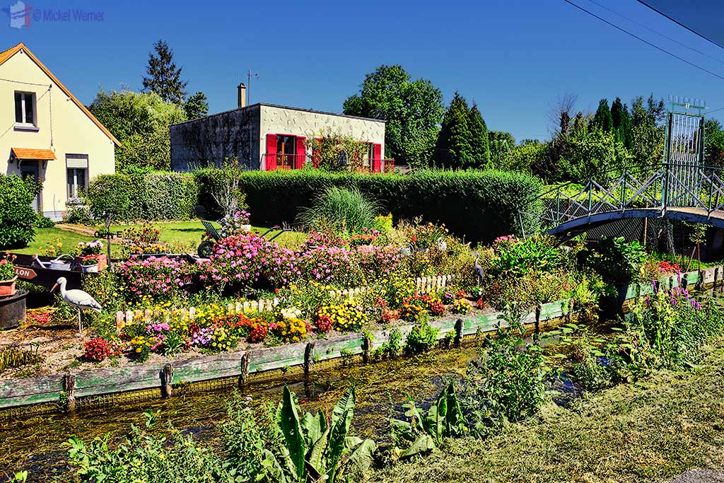The Hortillonnages (floating gardens) in Amiens