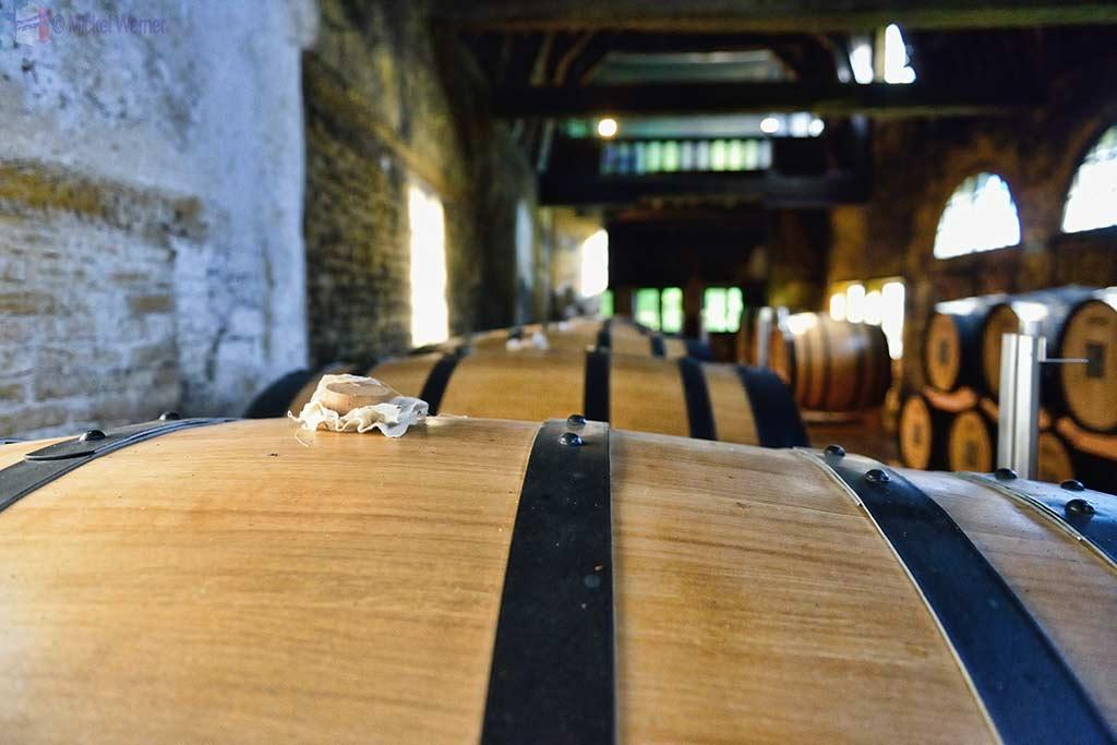 Storage barrels of the Chateau du Breuil calvados distillery