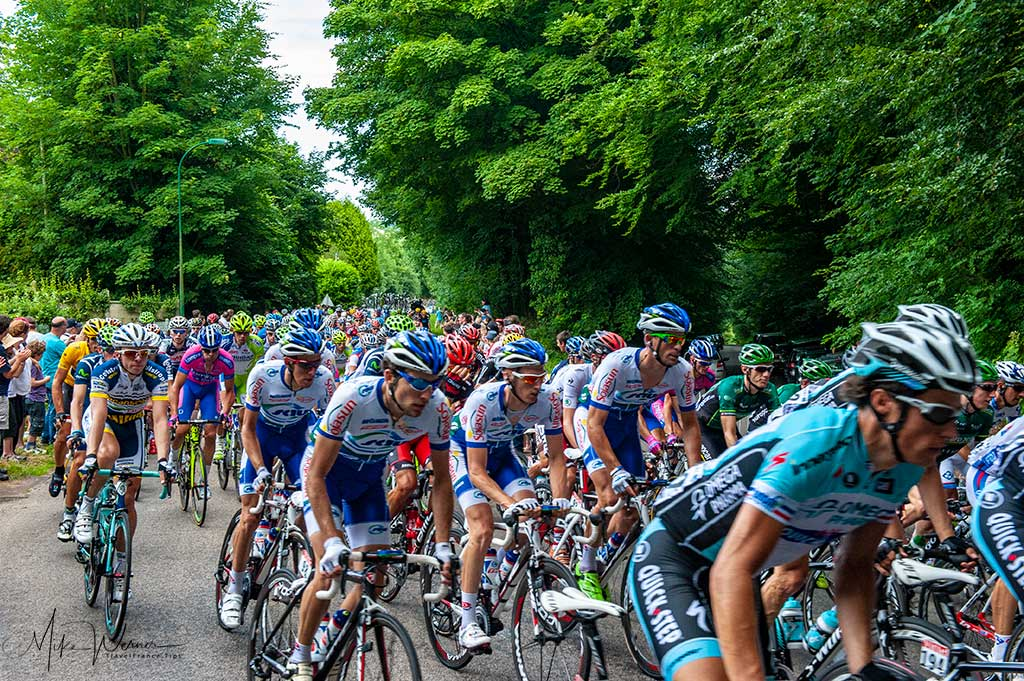 Bicycles in the Tour de France