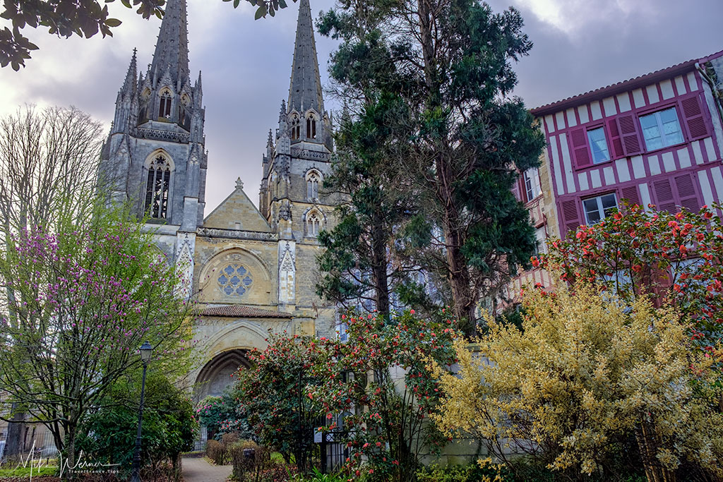 The Cathedral of Bayonne