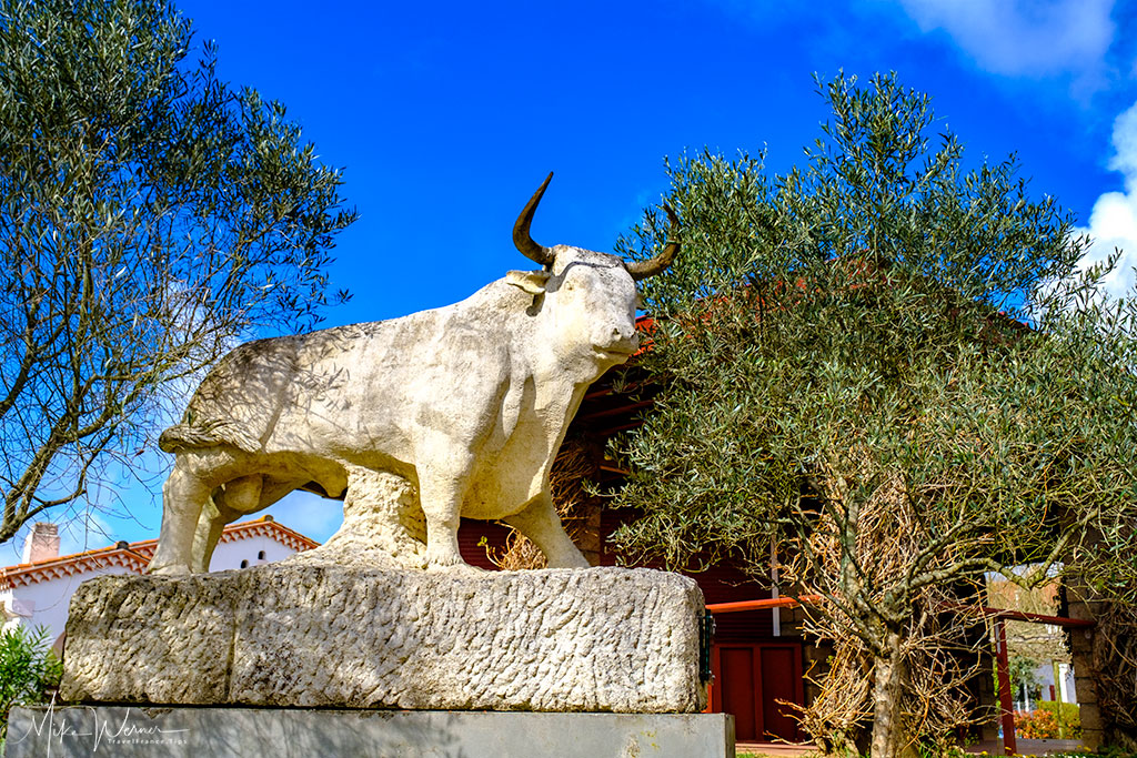 Bullfighting Arena in Bayonne