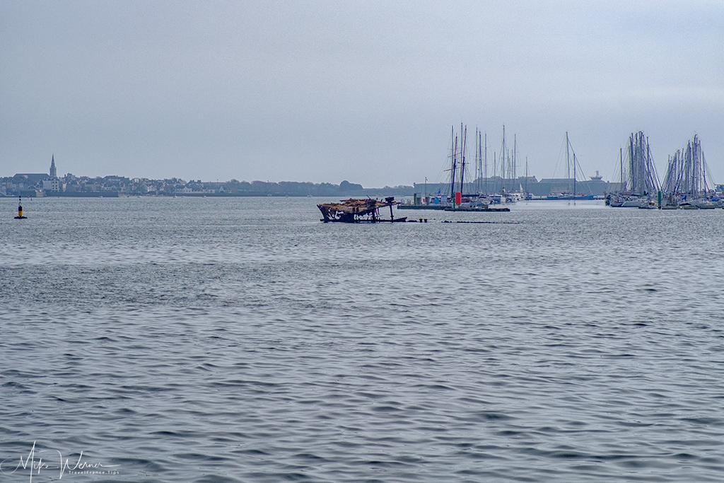 One of several sailboats marina