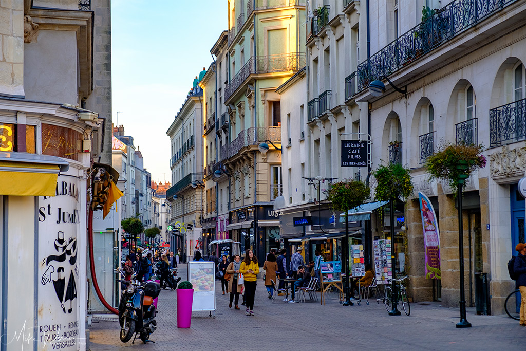 Shopping pedestrian street in Nantes