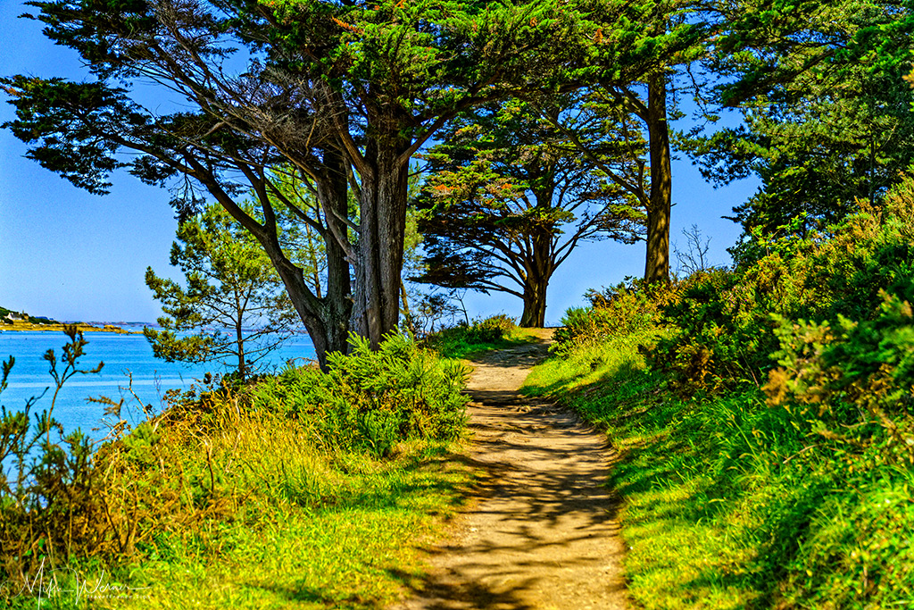 Hiking path of the Pointe-de-Guilben in Paimpol