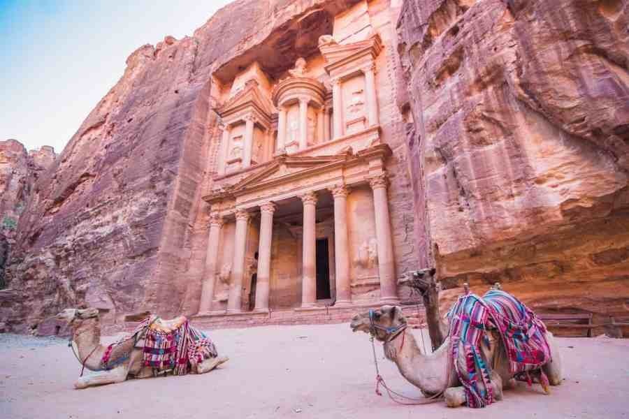 Camels in front of the Treasury in the ancient city of Petra