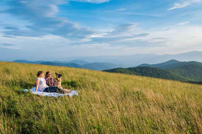 A popular hike in Asheville for locals to visit is Max Patch.