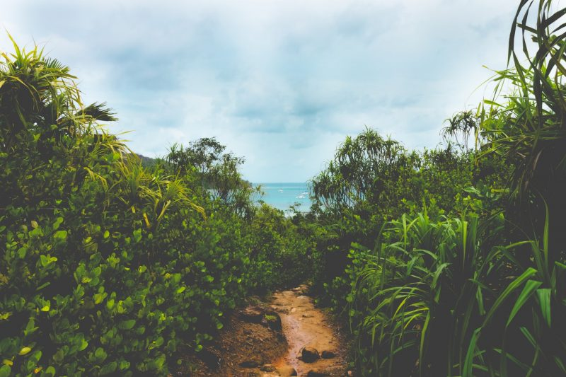 Morne Seychellois National Park, Mahé
