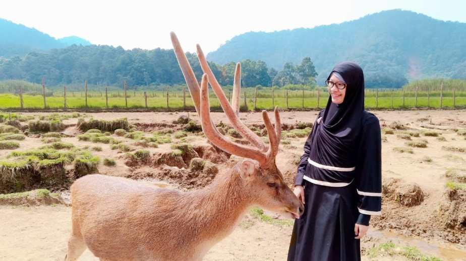 tips foto dengan rusa di ranca upas