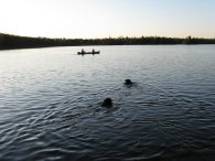 Happy ~ An Evening Paddle