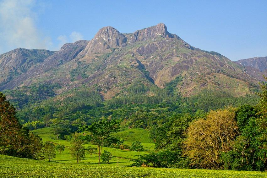 Mt. Mulanje