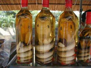 07-Snake wine with a bite