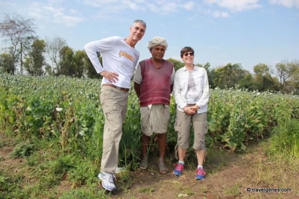 opium farm tour poppy