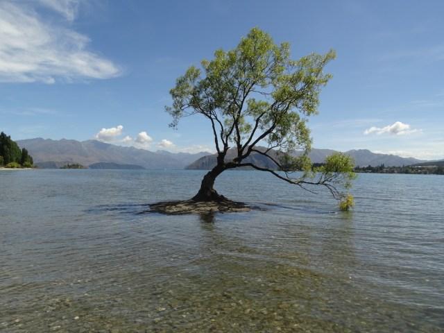 Lake-Wanaka-Nieuw-Zeeland-reistips-TravelGloss