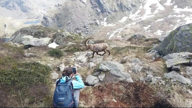 Monviso, trekking verso il rifugio Giacoletti